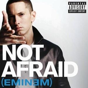 دانلود آهنگ Im Not Afraid – ترجمه متن آهنگ Im Not Afraid