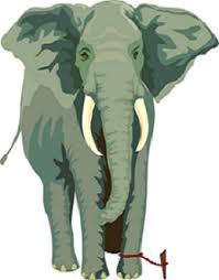 داستان کوتاه انگلیسی The elephant and the rope باترجمه فارسی