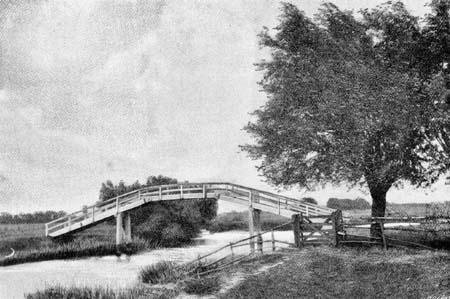 داستان کوتاه انگلیسی The Old Man at the Bridge باترجمه فارسی