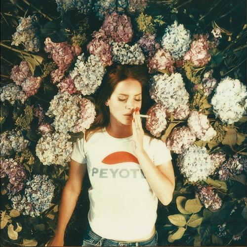 ترجمه متن و دانلود آهنگ Ultraviolence از Lana Del Ray