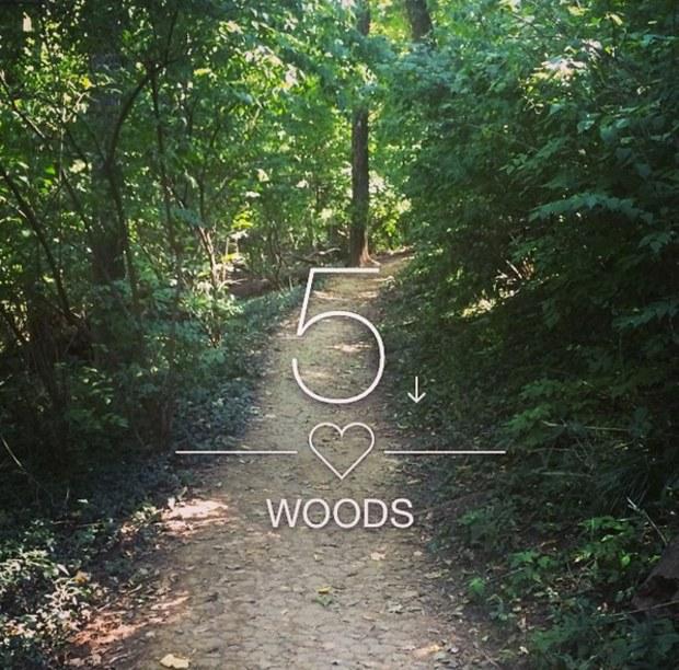ترجمه متن و دانلود آهنگ Out Of The Woods از Taylor Swift