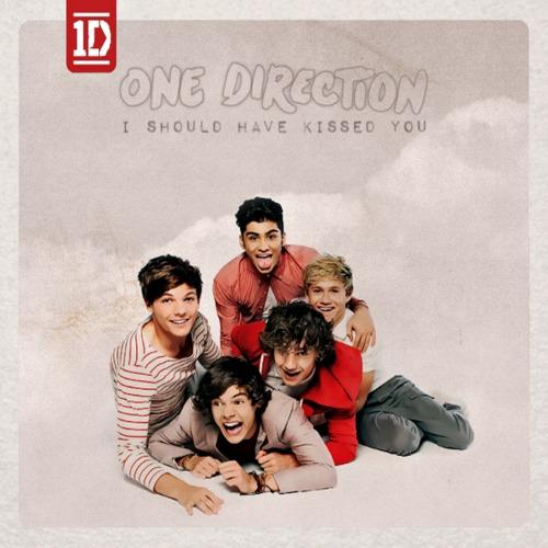 ترجمه متن و دانلود آهنگ I Should've Kissed You از One Direction