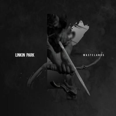 ترجمه متن و دانلود آهنگ Wastelands از Linkin Park