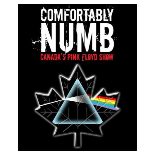 ترجمه متن و دانلود آهنگ Comfortably Numb از Pink Floyd