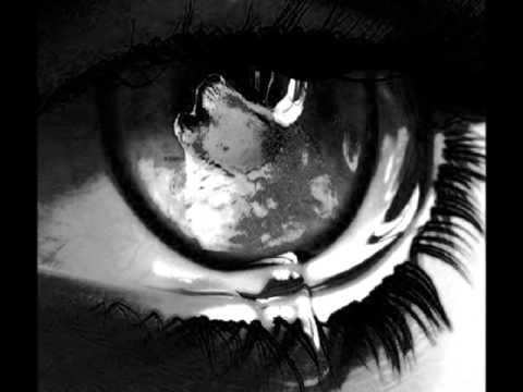 دانلود آهنگ A Lonely Passage از Saturnus همراه با ترجمه متن به فارسی