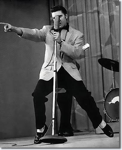 دانلود آهنگ Hound Dog از Elvis Presley با ترجمه متن آهنگ فارسی